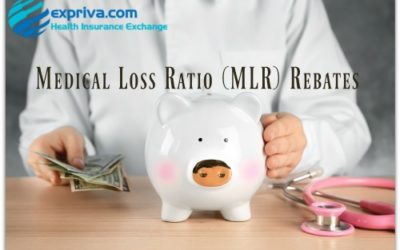 2018 Medical Loss Ratio (MLR) Rebate Timeline